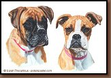 Bonnie and Hanson - Boxer Painting